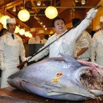Endangered Bluefin Tuna sells for $1.76 million at Tokyo auction